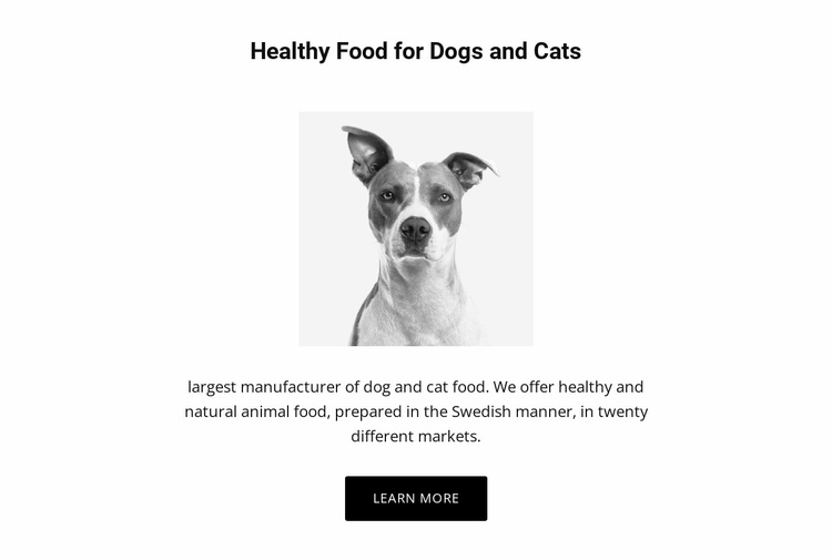 Healthy eating for dog Website Template