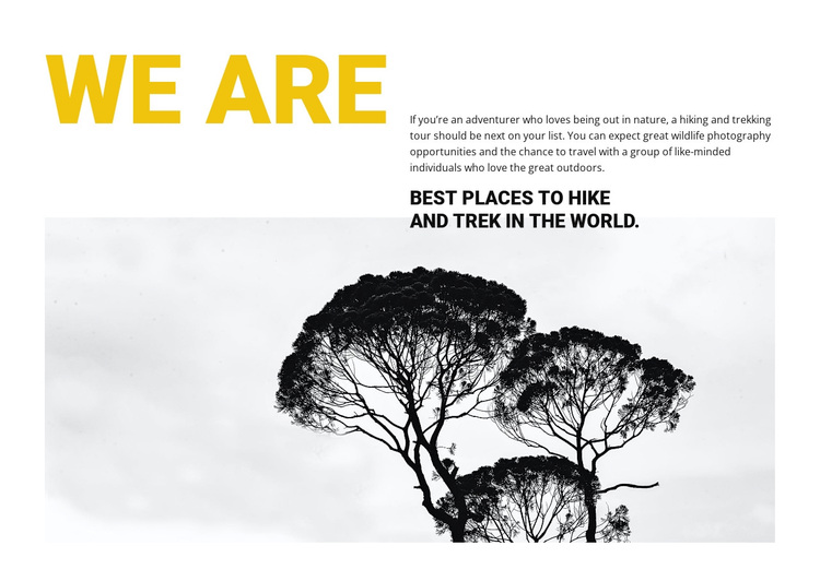 We are travel agency Template