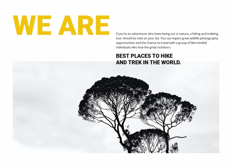 We are travel agency Website Design