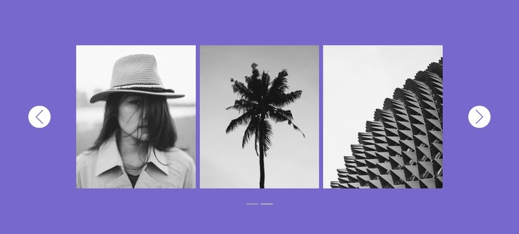 Our gallery in slider CSS Template