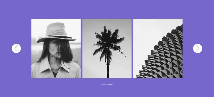 Our gallery in slider Html Code Example