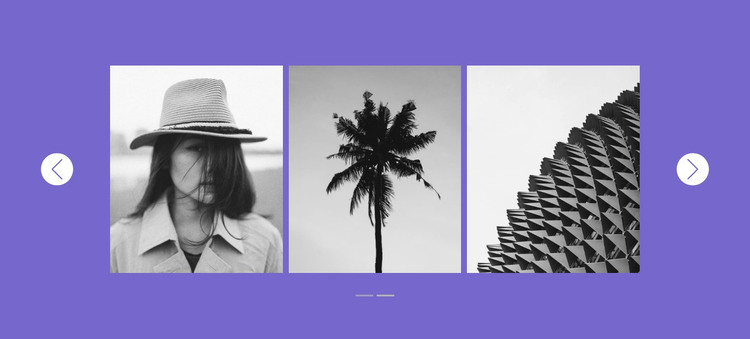 Our gallery in slider HTML Template