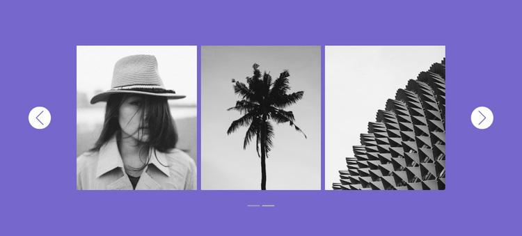 Our gallery in slider Website Design