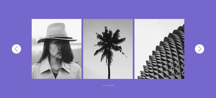Our gallery in slider Website Mockup