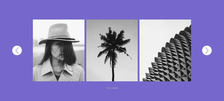Our gallery in slider Website Template