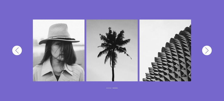 Our gallery in slider WordPress Theme