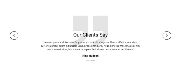 What our client say WordPress Theme