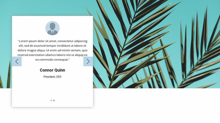 Visual testimonials Website Template