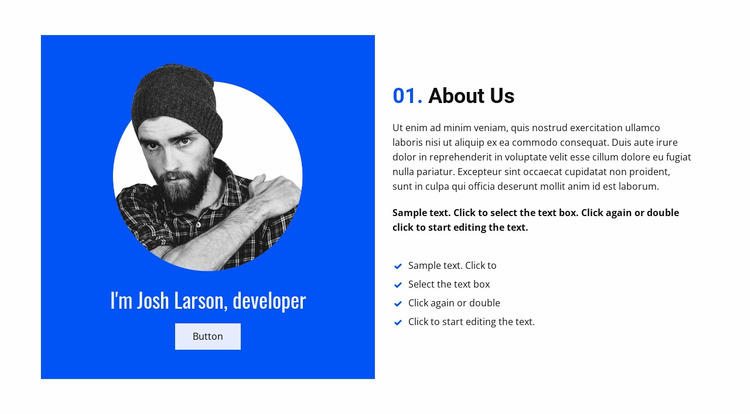 About Josh, our developer WordPress Website Builder