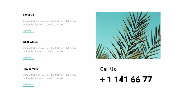 Call us Landing Page